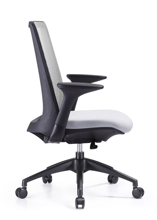 Creedence Ergonomic Leather Task Chair